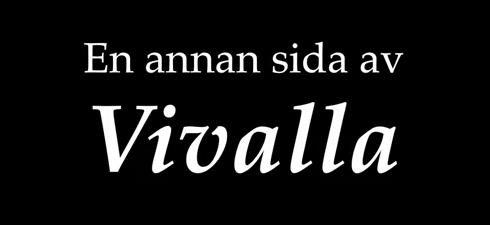 Vi intervjuar olika personer med någon slags koppling till Vivalla.